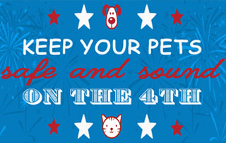 pet-fireworks-safety-feature-img
