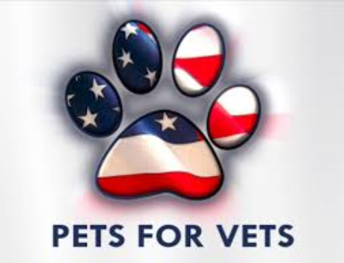 Pets for Vets-ROAR Ridgefield, CT Chapter in the news!