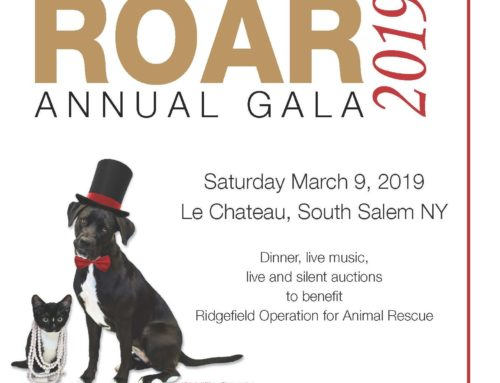 ROAR's 2019 Gala Tickets Now Available!