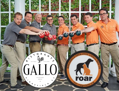 Guest Bartending Night at Gallo Ristorante to Benefit ROAR!